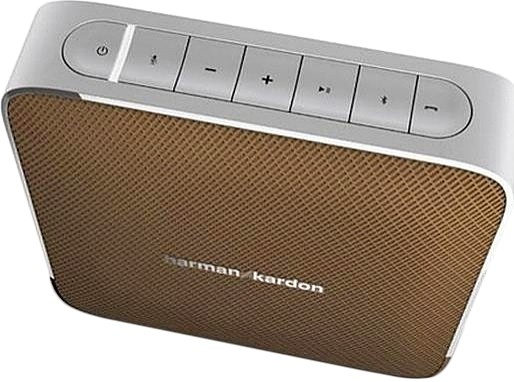 Harman Kardon Esquire Brown